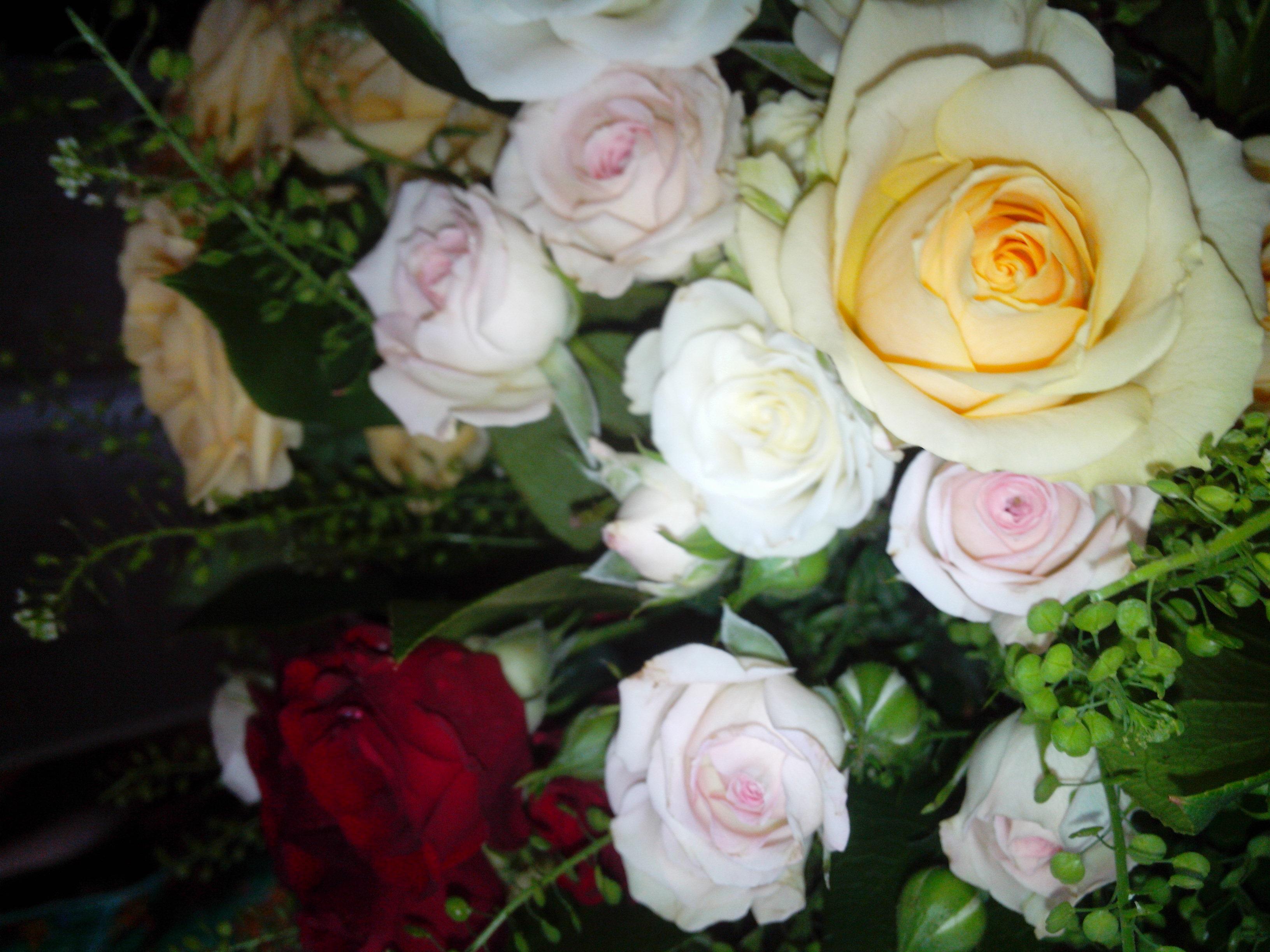 Пожухлые цветы за ваши деньги!